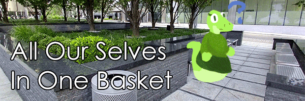 All Our Selves in One Basket – on centralization of social spaces
